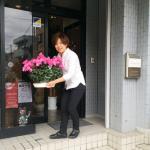 kimura_overthecounter